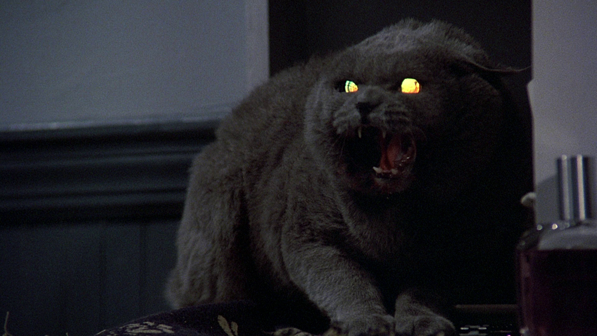 King on Screen: Pet Sematary (1989) - Deadshirt