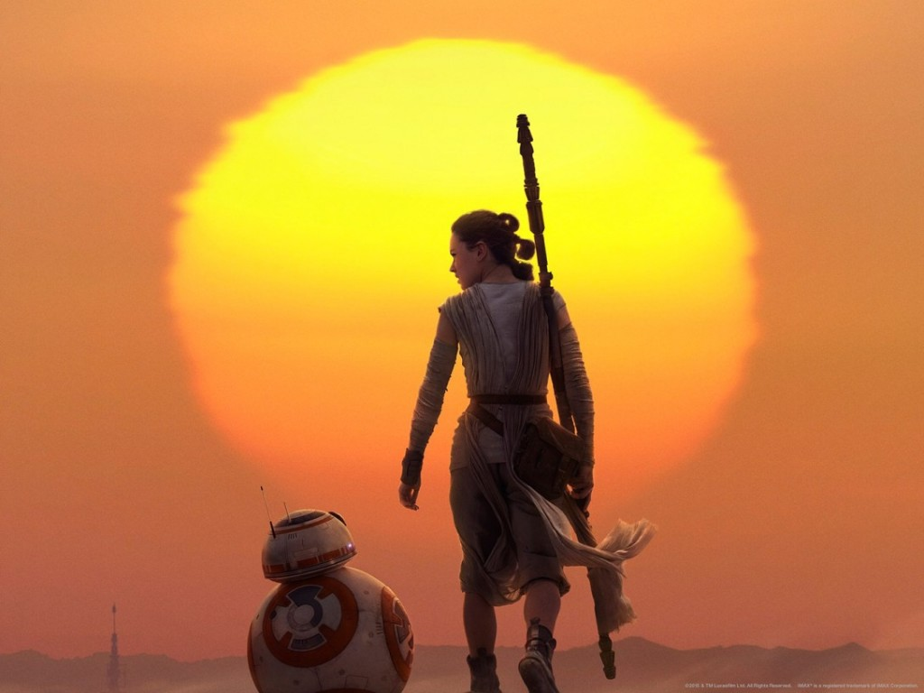 Rey against sunset