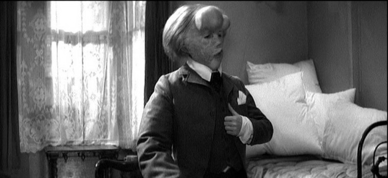 an analysis of the movie the elephant man David lynch's the elephant man as a movie that dehumanises and objectifies its  subject  i analyse the methods by which the film inadvertently portrays the.